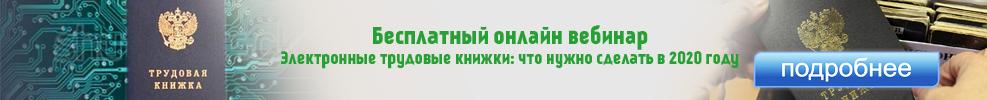 'Электронные трудовые книжки
